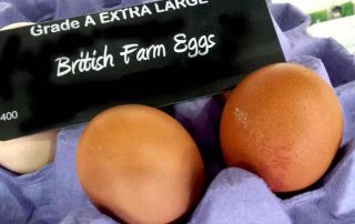 fresh farm eggs for Easter