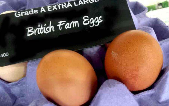 fresh farm eggs for Easter